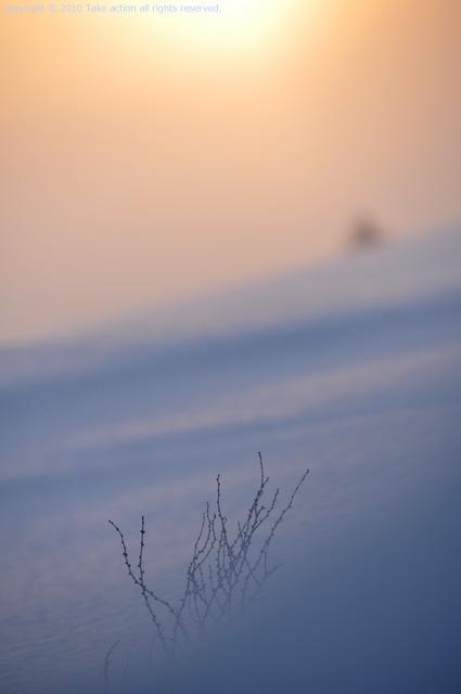 2012・3美瑛日の出3