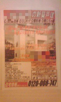 019-2_copy.jpg