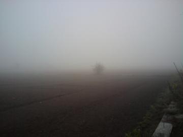 霧・靄?0059