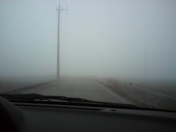 DSC00135霧
