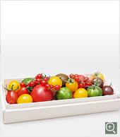 tomato_detail_01a.jpg