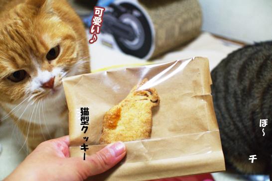 猫型クッキー9959のコピー
