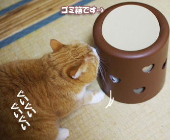 何してんのぷぷ230323のコピー