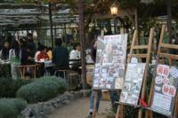 2008. 11.30ナチュラルライフマーケット 017_R