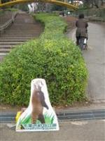 2009 1 17 千葉市動物公園 001_R