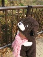2009 1 17 千葉市動物公園 055_R