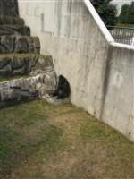 2009 1 17 千葉市動物公園 071_R