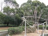 2009 1 17 千葉市動物公園 083_R