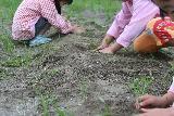 2009 あいを育てるプロジェクト 植え替え 002_R