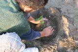 2009 あいを育てるプロジェクト 植え替え 010_R