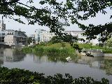 2009 05 26 城西国際大学 風景水彩画講座 007_R