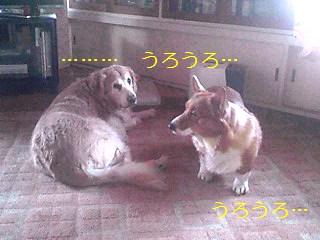 091201_1033_01_Ed_Ed.jpg