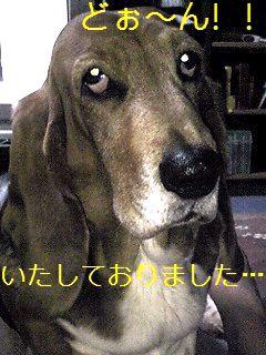 100327_2221_02_Ed_Ed.jpg