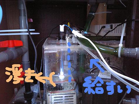 20081118kyu3.jpg
