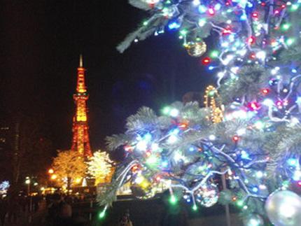 20081206sakura.jpg