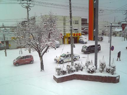 20081207yuki.jpg