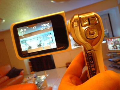 20081230kame2.jpg