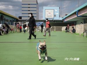 ららぽ4/242