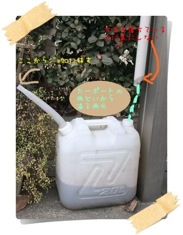 DSCF4969_20120116202353.jpg