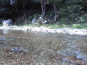 秋川渓谷31