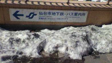 100316雪