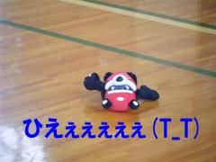 tesuto 043改 (小)