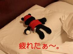 2009_1207201009260157 (小)