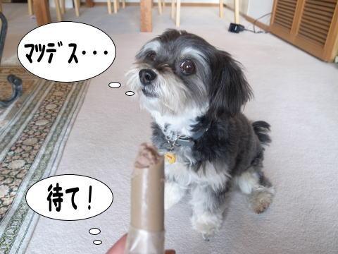 0221-8_20110220112205.jpg