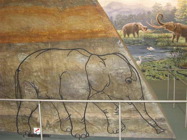 花巻博物館19