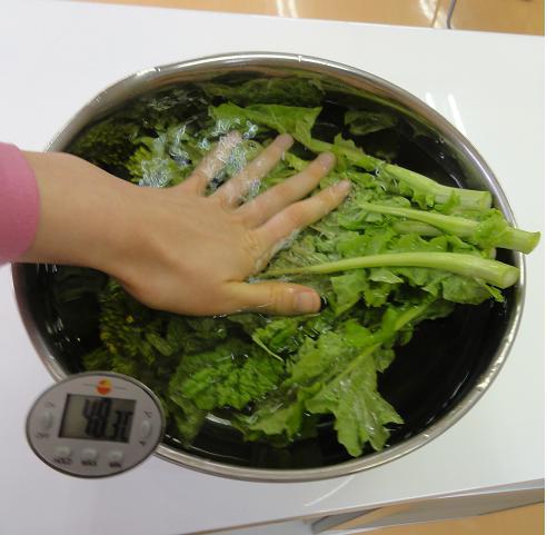 菜の花50度洗い2