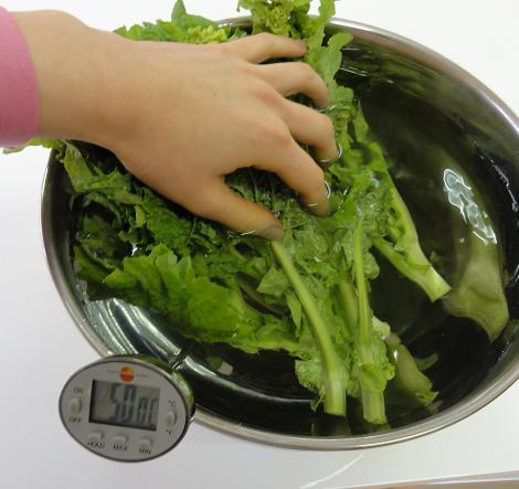 菜の花50度洗い1