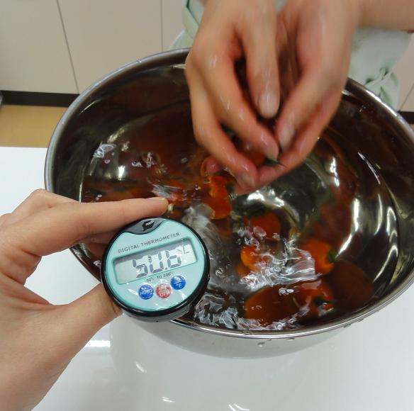 トマト洗い2
