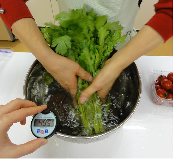 水菜洗い2