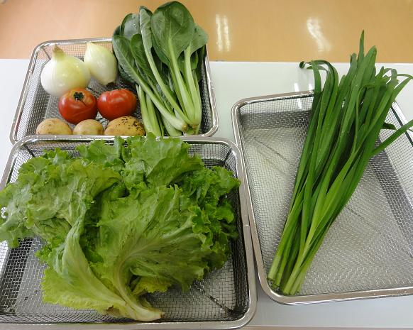 有機野菜50度洗い後