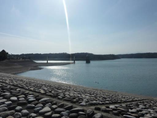 20110312・狭山湖24