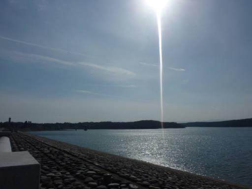 20110312・狭山湖23