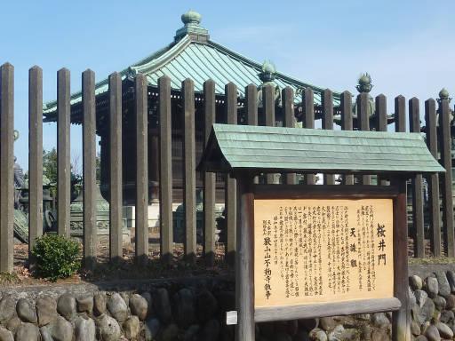 20110312・狭山湖30