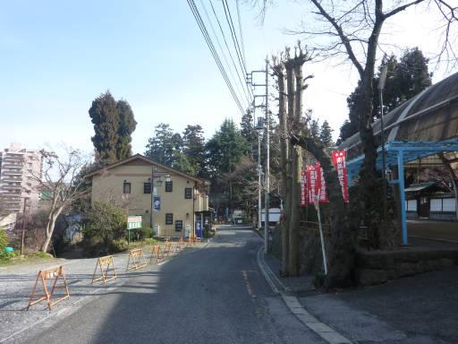 20110312・狭山湖33