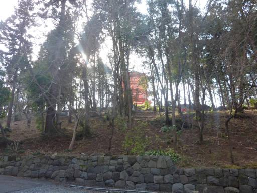 20110312・狭山湖43
