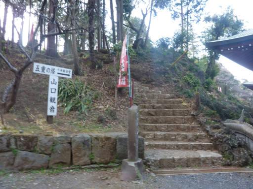 20110312・狭山湖44