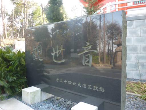 20110312・狭山湖48