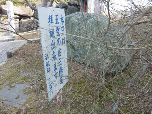 20110312・狭山湖60