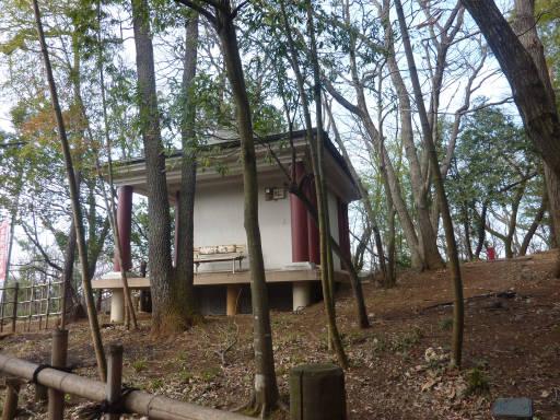 20110312・狭山湖68