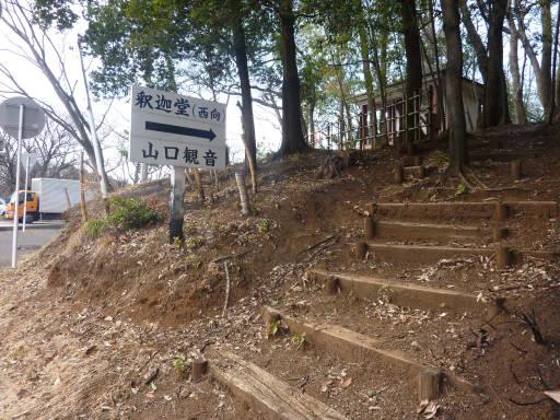 20110312・狭山湖66