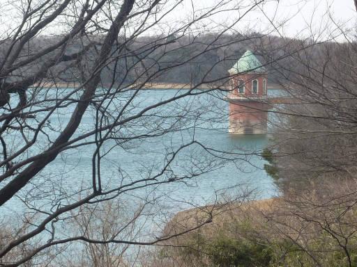 20110312・狭山湖74