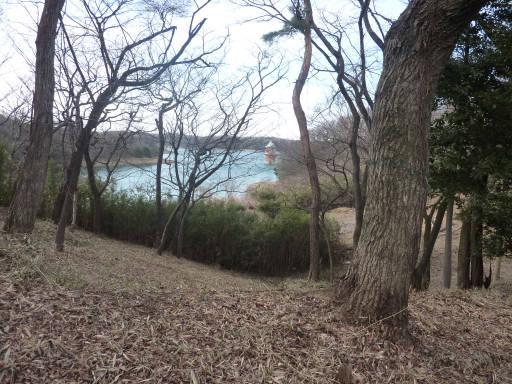 20110312・狭山湖73