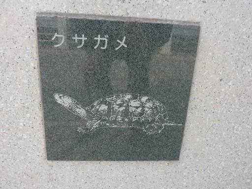 20110312・狭山湖76
