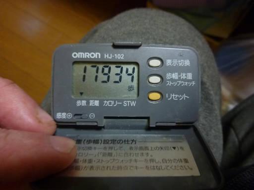 20110312・狭山湖94