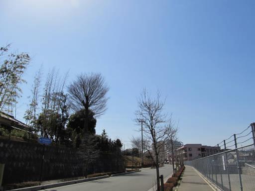 20110319・散歩02