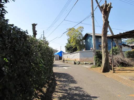 20110319・散歩07-8